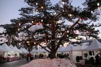 Gerede Kar Festivalı Başladı